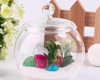 10 cm Transparent Micro Meaty Bryophytes Landscape Glass Vase Bottle With Cover