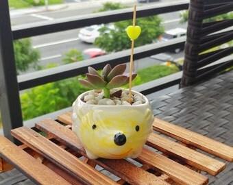 Hedgehog succulent planter - cute ceramic animal pot - mini planter for home decor, indoor, and kids or DIY (FREE letter charm & succulent)