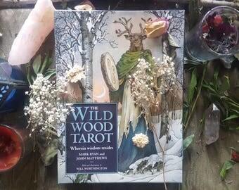 The Wildwood Tarot (Three Spreads Available)