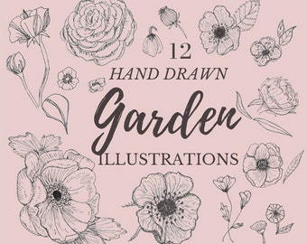 Hand Drawn Garden Illustrations- 12 line drawings, flowers, plants, botanical, rustic, romantic