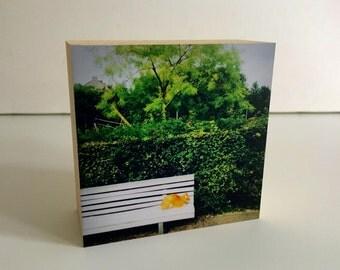 My place-bamboo photo block