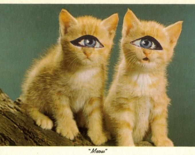 Strange Kitty Artwork, Kitsch Cat Collage, Humorous Postcard Art