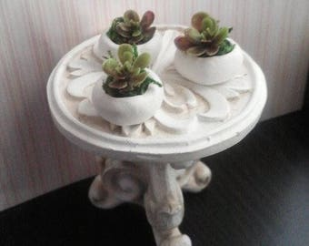 1:6 Scale 3 Potted Succulent Plants in White pots READY to SHIP