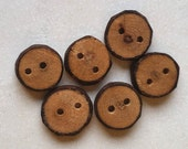 Rustic Wood Buttons from AskCheese, Natural Wood Buttons, Handmade Ash Tree Branch Wood Buttons, 1/2 Inch (13 mm), Set of 6