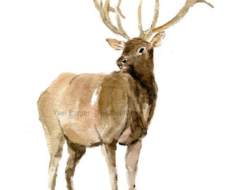 Elk 2 art print of  watercolor painting, Woodland art, wild life art, nursery decor. Christmas wall art, deer art, Elk print