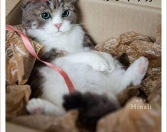 NEEDLE FELT Unbelievable Realistic Wool Felting Cats - Japanese Craft Book