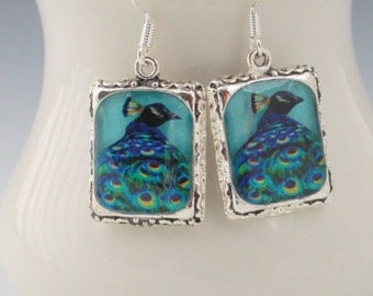 Peacock Bird Earrings Silver 3D Dimensional Picture Square Blue Wild Animal
