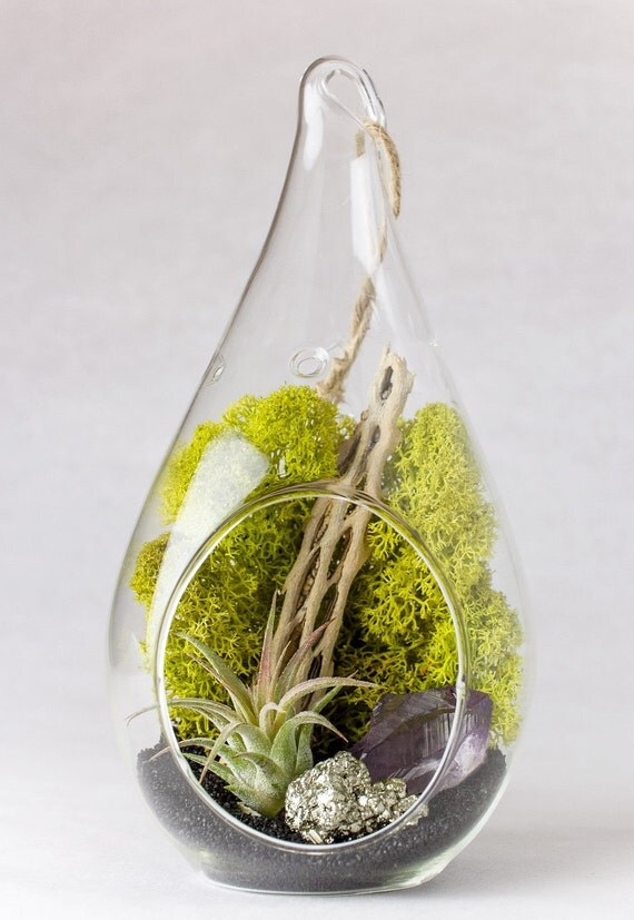 Hanging Teardrop Terrarium Amethyst Crystal Point with Pyrite || DIY Kit || February Birthstone || Natural Decor