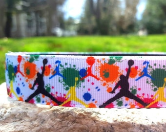 Sports paint 1 Inch Width Dog Collar