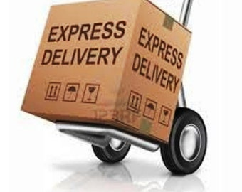 Xpress Shipping Express Delivery Upgrade for Canada and the USA Optional Front of the Line FTL