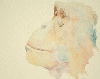 Chimp PRINT: A4 Print of an Original Watercolour Painting