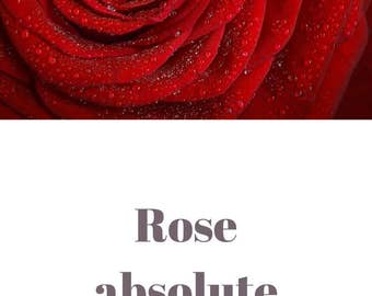 Rose absolute essential oil QRDS