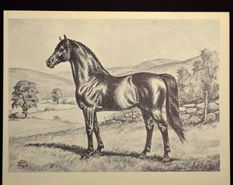 Thoroughbred Horse Print Horse Wall Art Horse Wall Decor Book Page