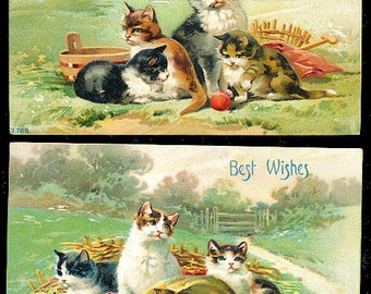 2 1911 Cats & Kittens Playing Postcards