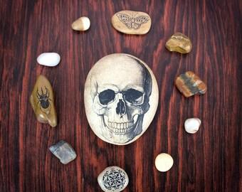 Skull/ Skull Art/ Skull Decor/ Gothic Home Decor/ Gothic Decor/ Goth/ Skull Gift/ Gifts for Men/ Human Skull/ Human Anatomy Art