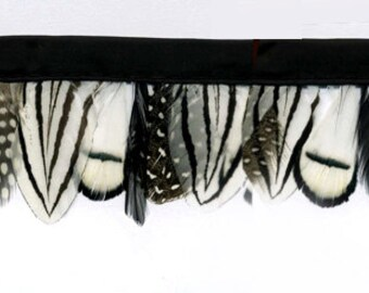 Elegant Winter Feather Fringe Trim ~ Lady Amherst Striped and Guinea Spotted feathers in Ivory & Black. Price is Per Yard