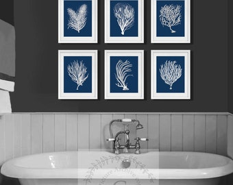 Navy Beach Wall Art, A Set Of 6 White Sea Corals With Navy Background.