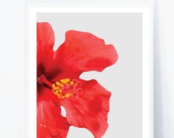 Red digital print, wall art, Flower art print, Summer Trends, Botanical Decor, Flower Prints,Flower Art Prints, Nature Art Print,Red Flower