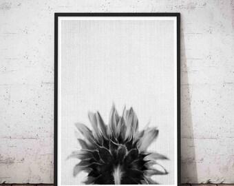 Sun Flower Art, Flower Print, Sun Flower Wall Art, Sun Flower Photography, Flower Printable, Flower Wall Decor, Flower Wall Print, Poster