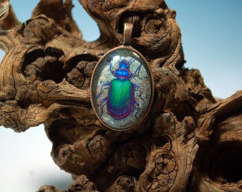 Fiery Searcher Beetle Pendant
