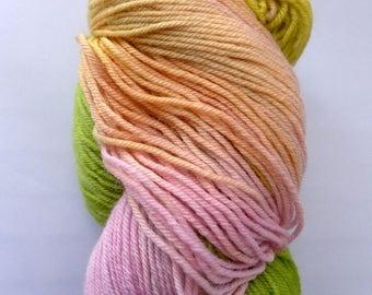 Lorna's Laces Shepherd Sock - Medill, 513 - Pink Green Yellow Fingering Superwash Merino Wool Nylon Yarn