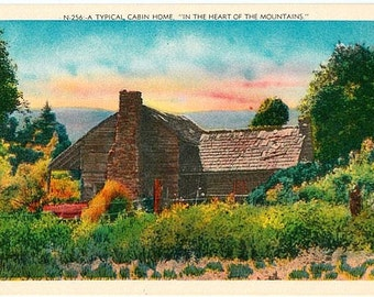Vintage Postcard - A Cabin Home in the Mountains (Unused)