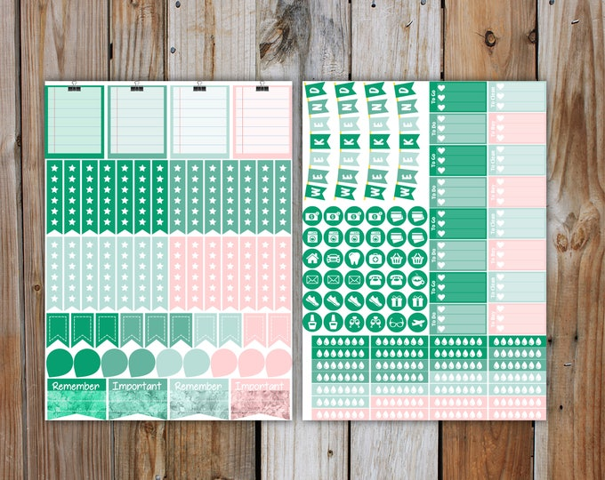 June Planner Stickers Monthly Kit (4 weeks of stickers) | for use with Erin Condren LifePlanner | June 2017