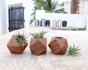 Teak Wood Planters (Geometric Shapes - Cuboctahedron) / Handmade for cactus, succulents, and air plant