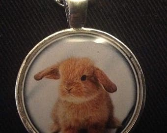 Easter resin brown bunny pendant