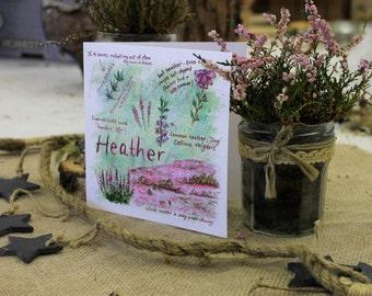 Heather Greeting Card