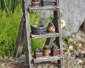 Plant Display Ladder for Miniature Garden, Fairy Garden