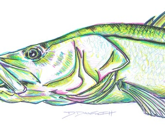 Snook Art