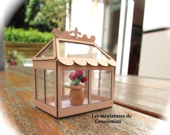 Miniature greenhouse-