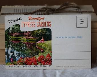 Vintage Florida images folder - Greetings from  Cypress Gardens, FLORiDA  - Vintage images