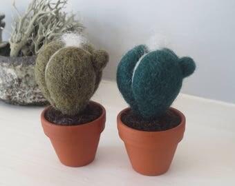 Miniature felt cactus in terracotta pot small gift keepsake ornament