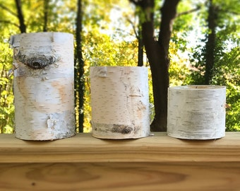 Set of 3 Birch Log Candle Holders Tealight Natural Wood Reclaimed Upcycled Tree Branch