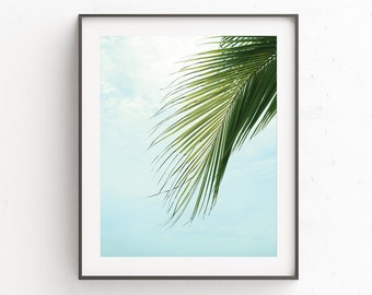 Palm Leaf Poster | Large Beach Wall Art | Tropical Decor Print