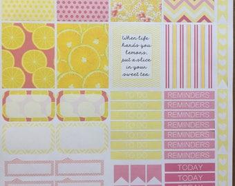 Erin Condren Weekley Kit Pink and Yellow Lemonade