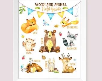 Buy One Get One, Woodland Animal Field Guide, Rustic Baby Nursery Decor, Woodland, Fox Moose Bear Deer Owl Raccoon Squirrel Rabbit, Nursery