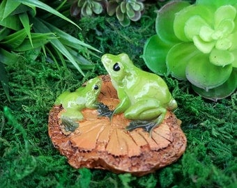 Miniature Frogs on a Wood Chip