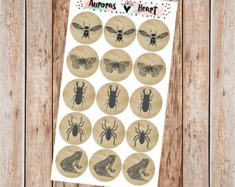 Vintage insect illustrations circle planner stickers