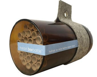 Mason Bees - Native Bee Nest - Urban Bee House - Bee Houses - Pollination - Solitary Bees - Attract Native Bees - Bee Nest - Insect Nest Bee