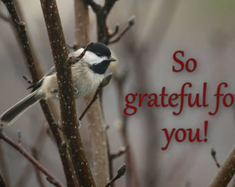 26. Chickadee in Tree; photo greeting card; gift; nature; wall art