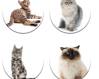 A pack of 4 beautiful cats weights Ideal for weighing down patterns on delicate fabrics no need for pins like TV sewing Bee