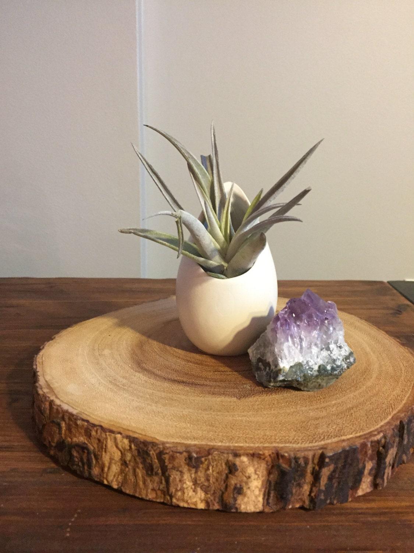 hanging ceramic air plant holder hanging air planter by. Black Bedroom Furniture Sets. Home Design Ideas