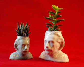 Einstein Ceramic Planter