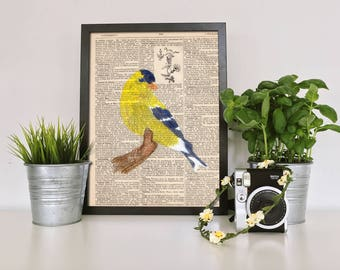 Goldfinch on Vintage Dictionary Page, Art, Watercolor, Original Painting, 8 1/2 x 11, yellow, blue, bird, mixed media