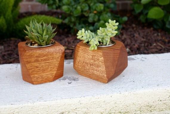 Modern Mahogany Wood Geometric Succulent Planters