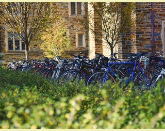 Photograph, digital print, wall decor, home decor, gift, Duke, University, bikes, bicycles, grad gift, print, modern, housewarming gift