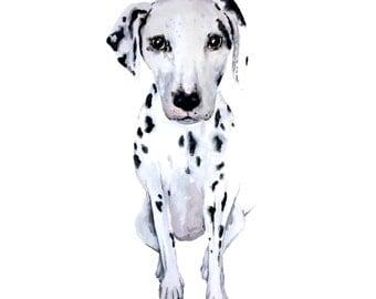 Dalmatian Print - Watercolour Painting